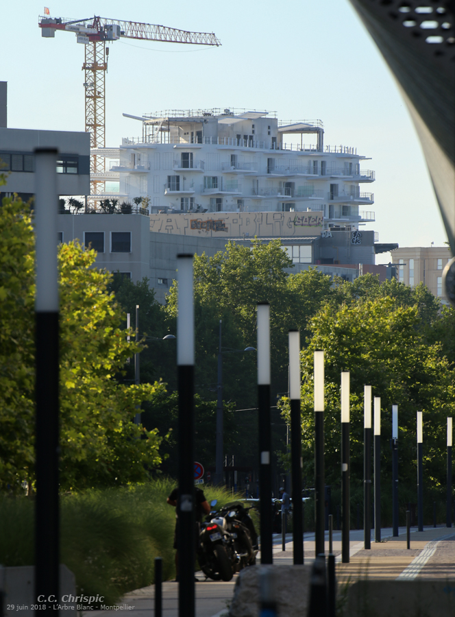 http://www.chrispics.fr/montpellierocties/chmon14456.jpg